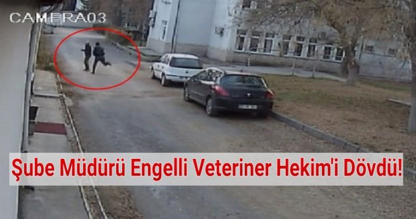 Elazığ'da Şube Müdürü Engelli Veteriner Hekim'i Dövdü.